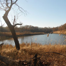indiana dunes - miller woods trail - gary